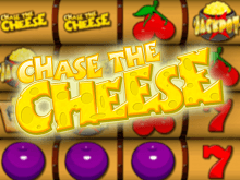 Chase The Cheese